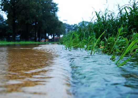 Stormwater reporting Lind
