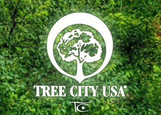 Tree City USA NEws Flash
