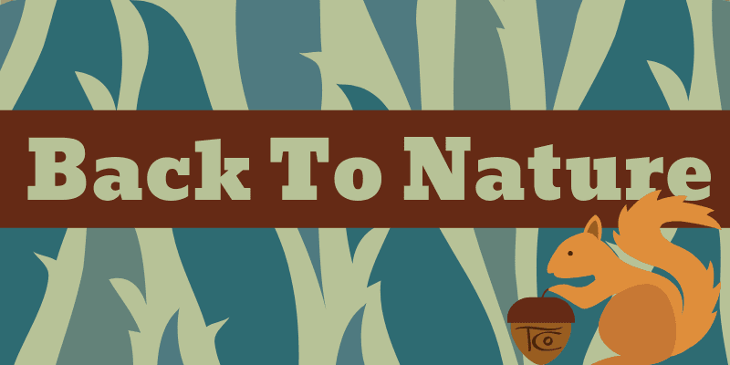 Back To Nature 2020 Website Banner